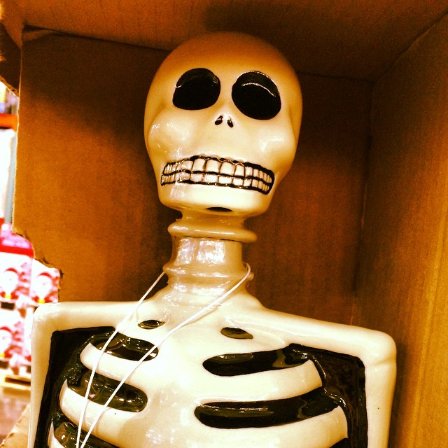 Looks like a frightful hangover with this!!! Ha ha! Skeleto Agave Tequila by Azulejos. ??? _______________________________________  #halloween #sonyapaz  #sonyapazstudio #agave #agavetequila #skeleto #Azulejos #sleleton #costco #collector #decanter #fun
